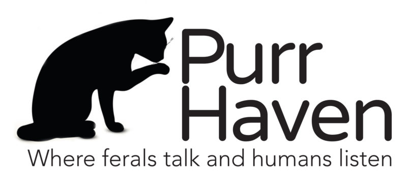 PurrHaven Spay Neuter Outreach  (South Washington County, MD)