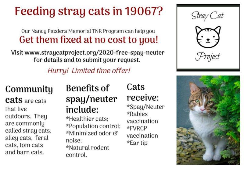 Stray Cat Project – FREE Community Cat Spay/Neuter (PA)